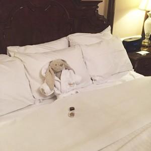 aventuras-conejo-peluche-perdido-hotel-adare-manor-4