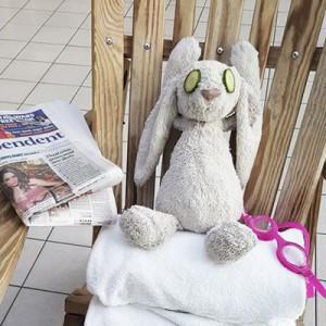 aventuras-conejo-peluche-perdido-hotel-adare-manor-7